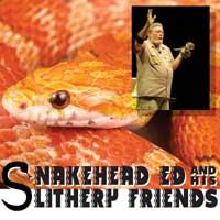 SnakeheadEd