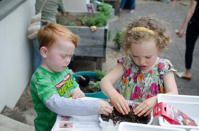 Creating seed bombs in the library's Courtyard Garden