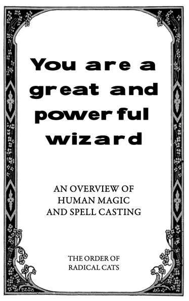 You are a great and powerful wizard cover