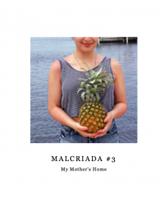 Malcriada v. 3: My Mother's Home